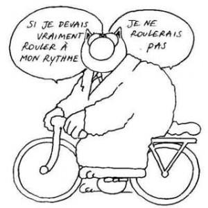 vélo_le chat
