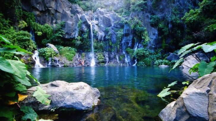 Ile de la Réunion, un paradis à l'état brut