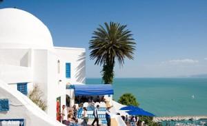 tunisia-winter-birds-hotel