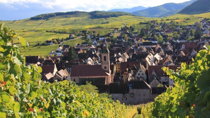 Route des vins : commençons par le Bas-Rhin