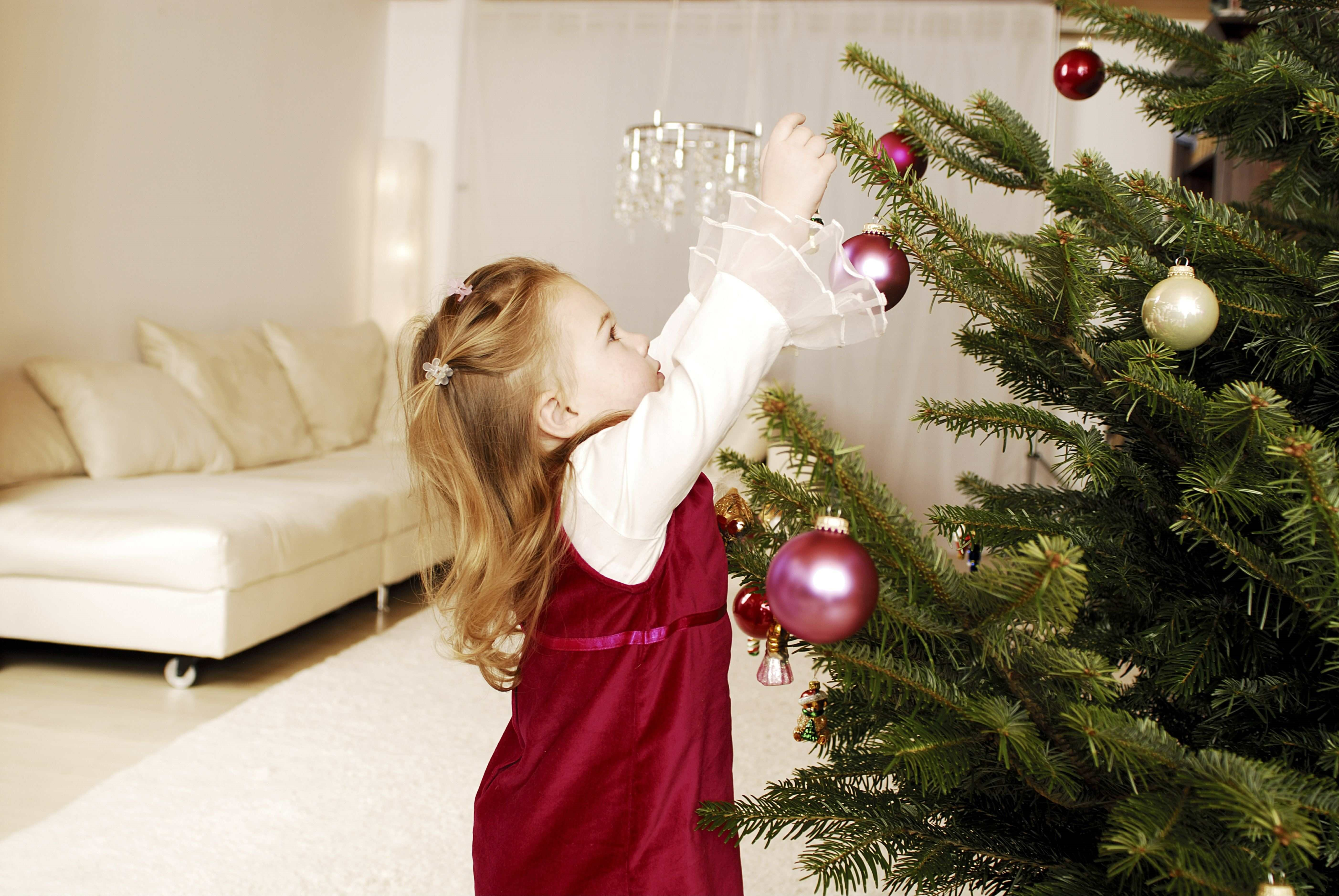 christmas, girl, christmas tree, decorates, sidewards, series, people, child, toddler, blond, christmas-tree, spruce, branches, tree-jewelry, christmas tree decorations, christmas-balls, bird, decoration, tradition, tradition, advent, preparation, c [...]