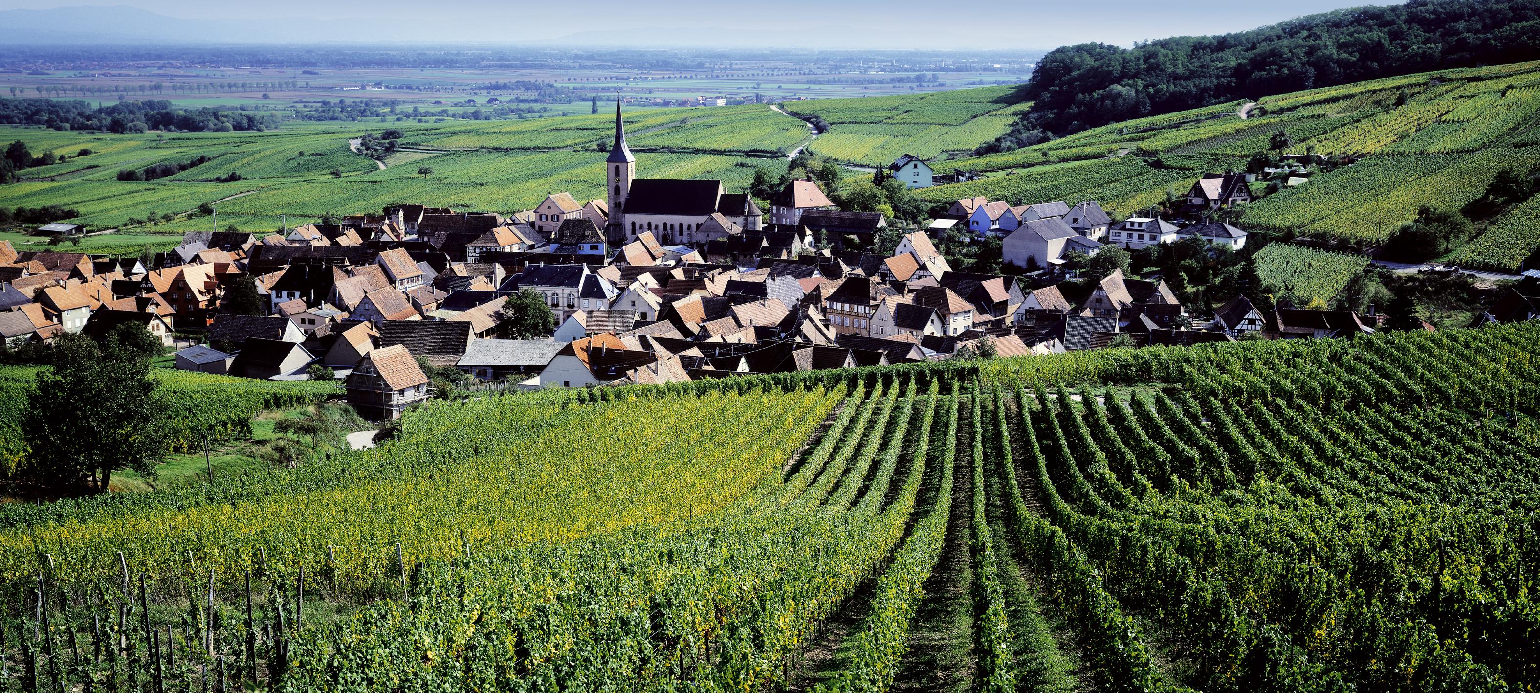Village de Blienschwiller - © © AAA / Zvardon