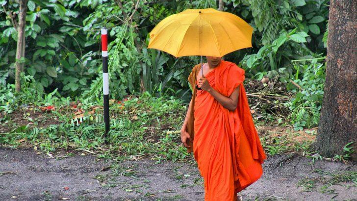 Sri Lanka : voyage au pays du sourire