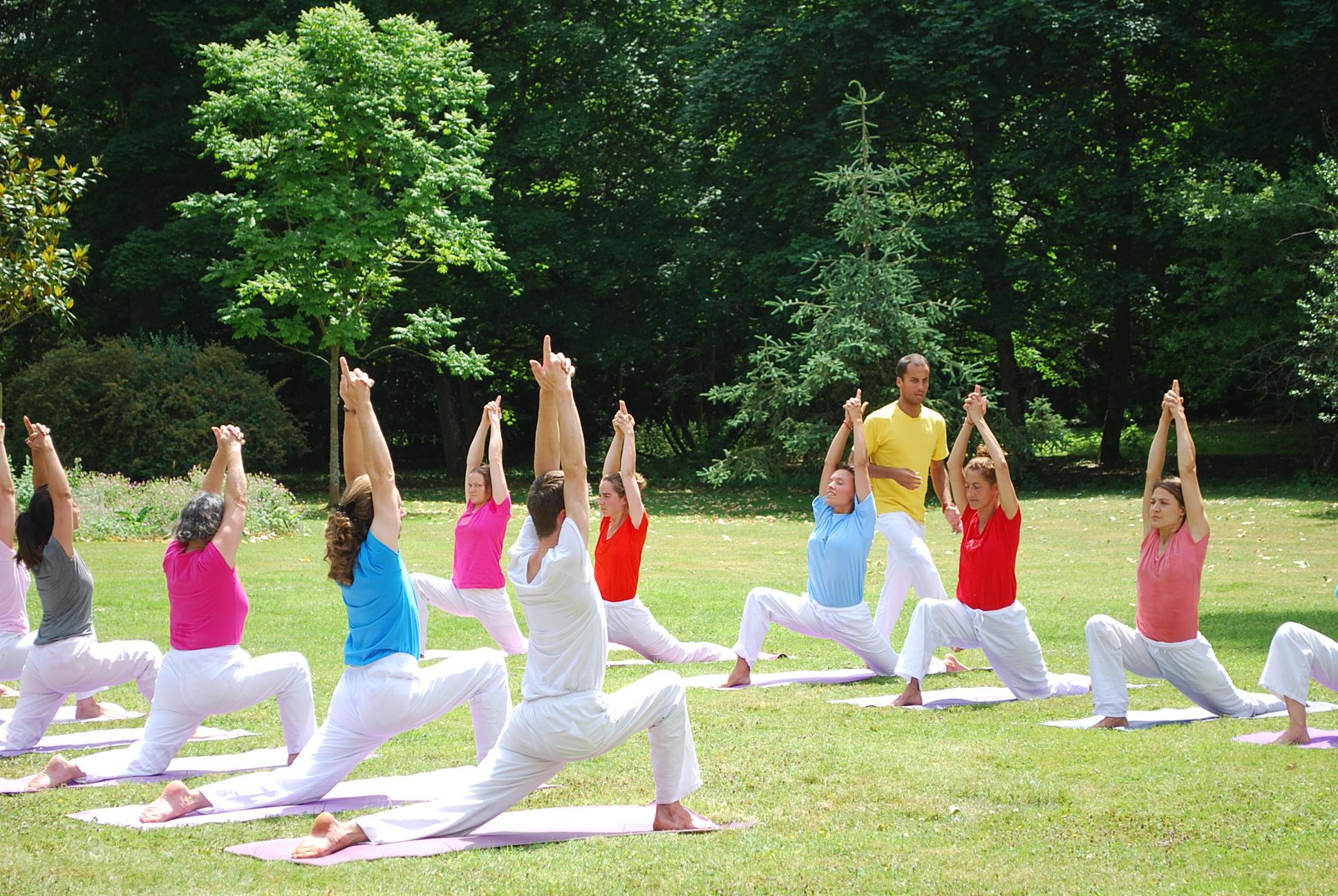 """Résultat de recherche d'images pour """"les 4 voies yoga sivananda"""""""