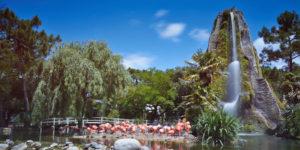Le zoo de la Palmyre (Palmyre-Les Mathes) : 4 hectares et 1600 animaux à découvrir