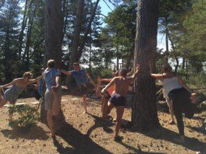 Faire du yoga et de la sylvothérapie en forêt