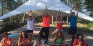 Yoga et Sylvothérapie:  le duo gagnant des vacances en plein air
