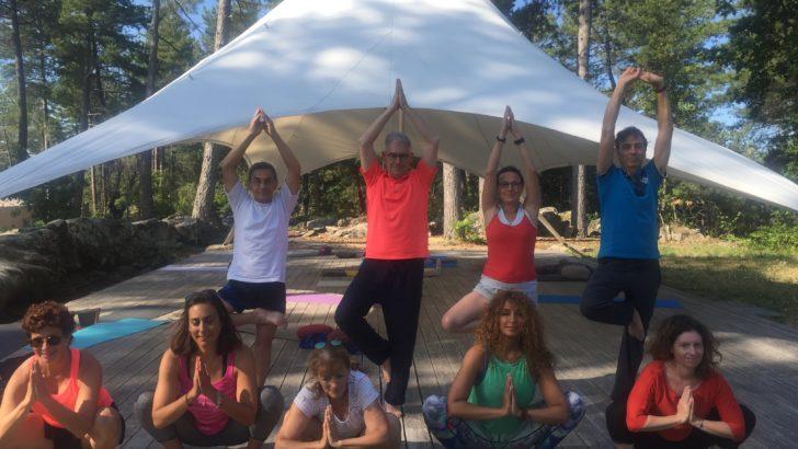 Yoga et Sylvothérapie:  le duo gagnant des vacances de l'après-confinement