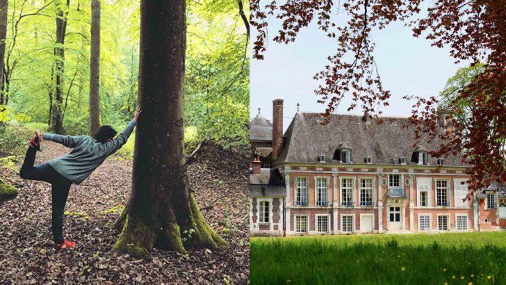 Sylvothérapie et Yoga en Normandie